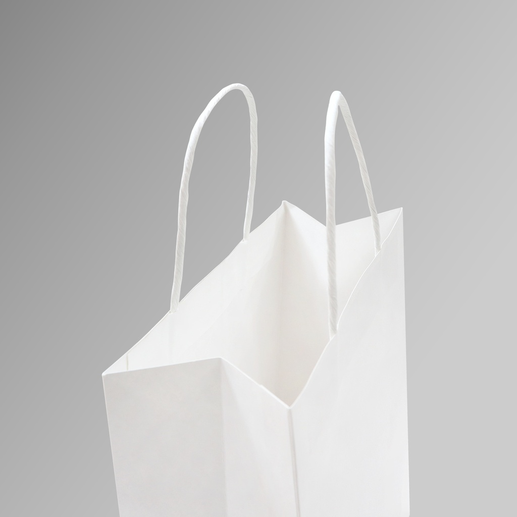 ZDPACK | PAPER BAG WHITE TWISTED HANDLE 23x26x10 cm | 250 Pieces