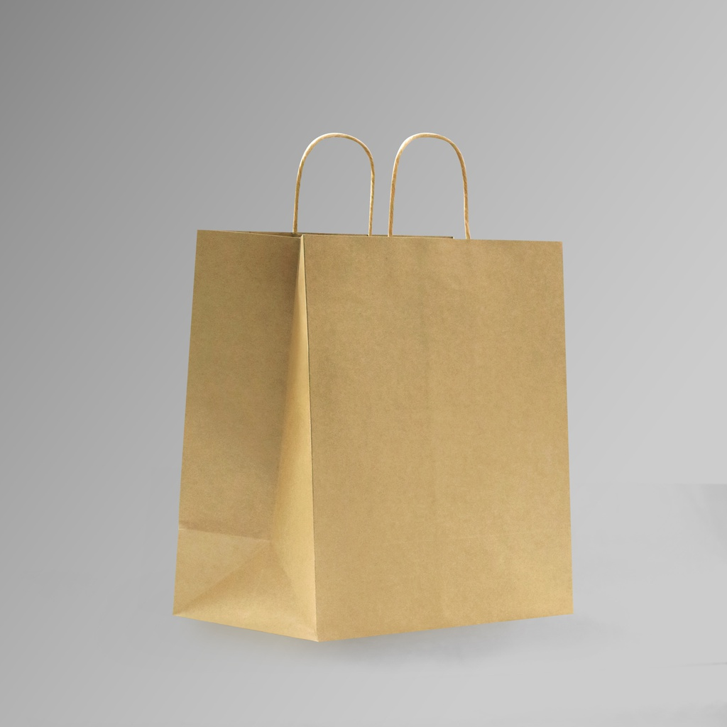ZDPACK | PAPER BAG BROWN TWISTED HANDLE 30.5x37x18 cm | 250 Pieces