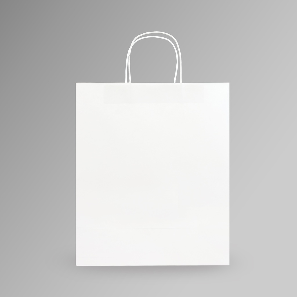 ZDPACK | PAPER BAG WHITE TWISTED HANDLE 30x35x15 cm | 250 Pieces