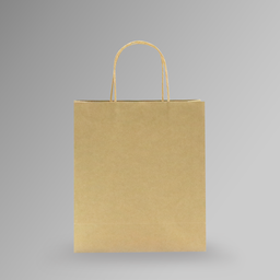 [23x26x10] ZDPACK | PAPER BAG BROWN TWISTED HANDLE 23x26x10 cm | 250 Pieces