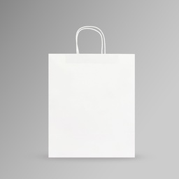 [31x37x17] ZDPACK | PAPER BAG WHITE TWISTED HANDLE 31x37x17 cm | 250 Pieces