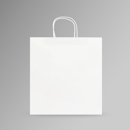 [35x35x17] ZDPACK | PAPER BAG WHITE TWISTED HANDLE 35x35x17 cm | 250 Pieces