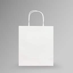 [23x26x10] ZDPACK | PAPER BAG WHITE TWISTED HANDLE 23x26x10 cm | 250 Pieces
