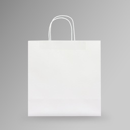 [30x31x14] ZDPACK | PAPER BAG WHITE TWISTED HANDLE 30x31x14 cm | 250 Pieces